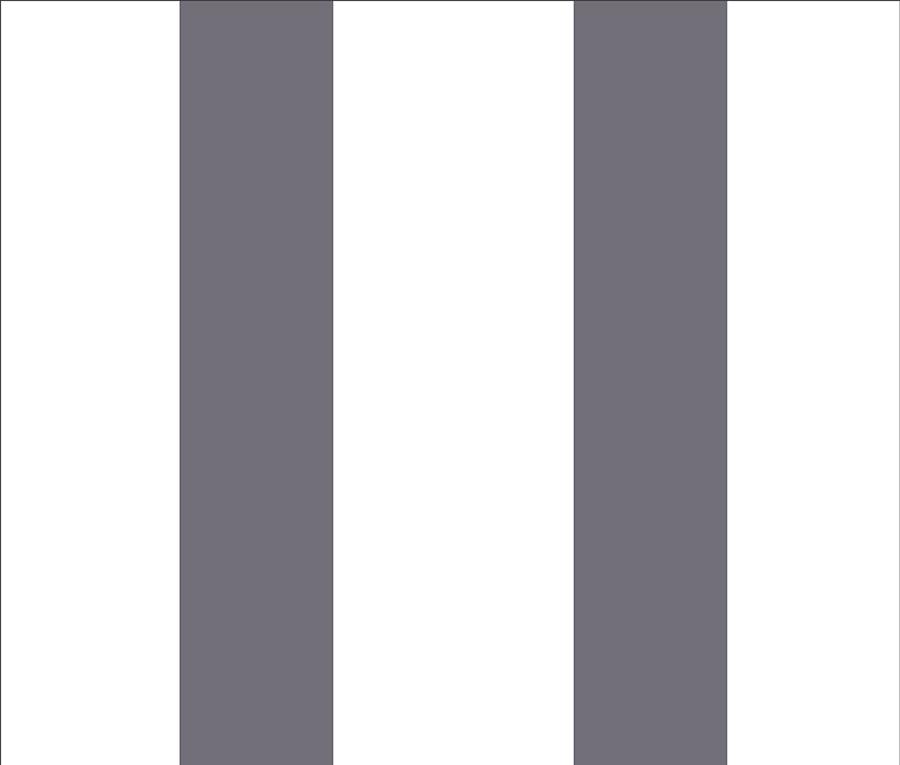 blanc / anthracite 572-50489C
